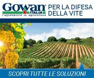 Soluzioni innovative per una viticoltura sostenibile