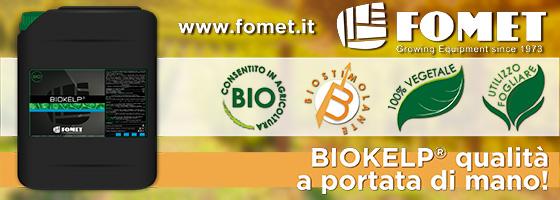 Biokelp<sup>®</sup>, qualità a portata di mano
