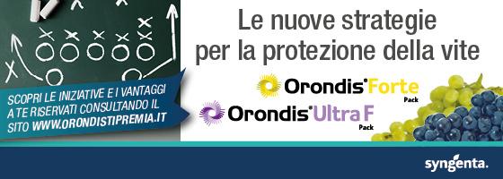 Scopri le iniziative e i vantaggi che Orondis ti riserva