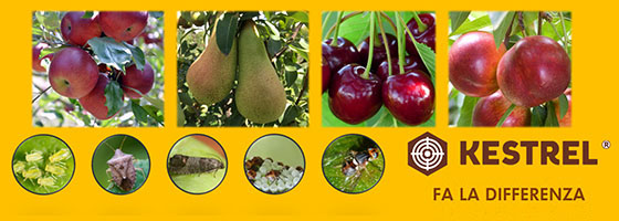 La miglior protezione del tuo frutteto