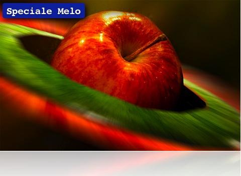 Melo II