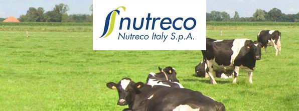 Nutreco Italy, soluzioni nutrizionali per animali sani e forti