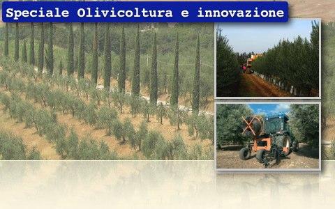 Olivicoltura e innovazione