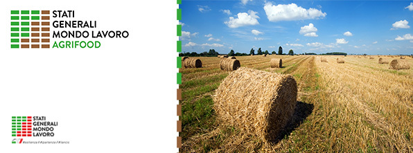Stati generali mondo lavoro - Agrifood
