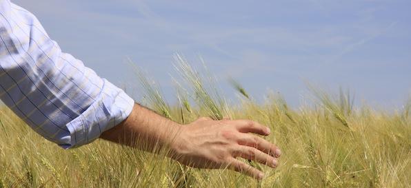 Storie dell'agricoltura