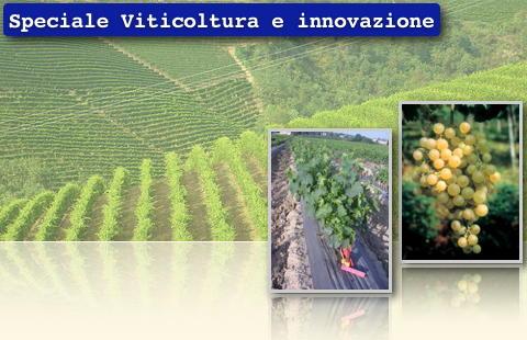 Viticoltura e innovazione