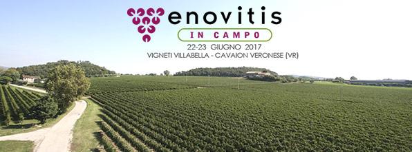 Enovitis in campo 2017