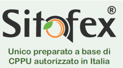 Logo sitofex