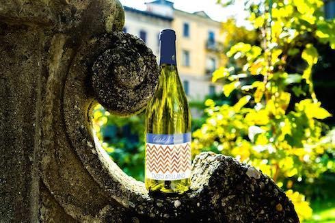 Bottiglia di vino di Leonardo Da Vinci