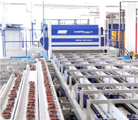Cooperativa Agrintesa, impianto di selezione e calibratura realizzato da Unitec, con sistema Cherry Vision 2