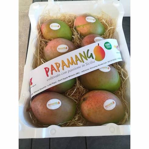 Papamango pronti per essere venduti