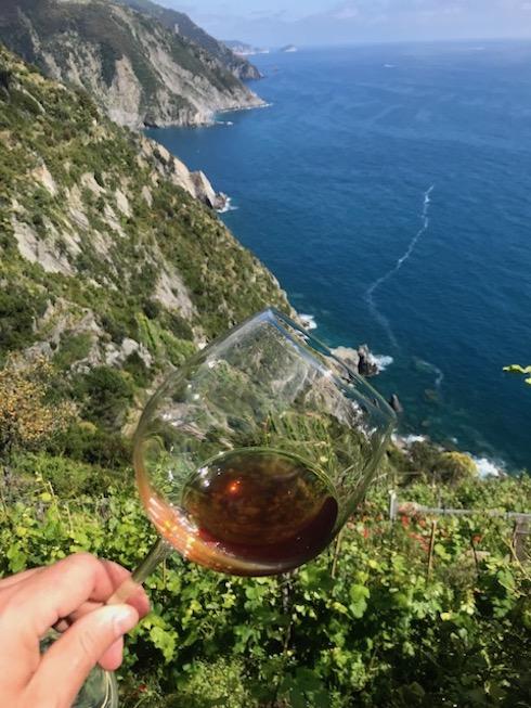 Sono numerosi i vini prodotti dall'azienda agricola Possa