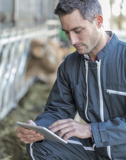 La gestione informatizzata consente un controllo completo sulla stalla