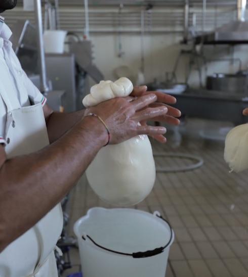 Ogni caciocavallo viene prodotto a mano, seguendo la tradizionale lavorazione artigianale
