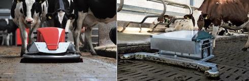 Esempi di robot che puliscono il pavimento fessurato (a sinistra foto Lely; a destra foto Gea)