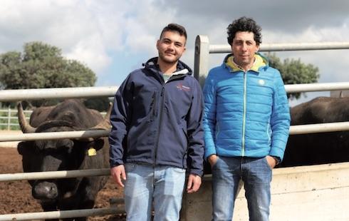 Giovanni Dinatale e Donato Chiumiento, il veterinario campano specialista in bufale che segue l'azienda siciliana