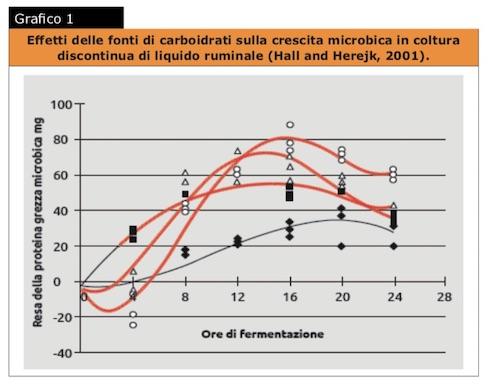 Effetti delle fonti di carboidrati sulla crescita microbica in coltura discontinua di liquido ruminale (Hall and Herejk, 2001)