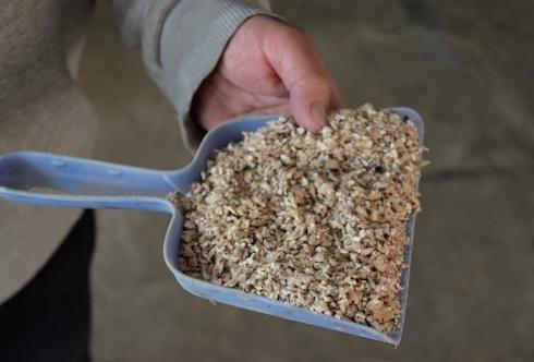 Al Farneto la granella d'orzo viene frantumata in modo grossolano