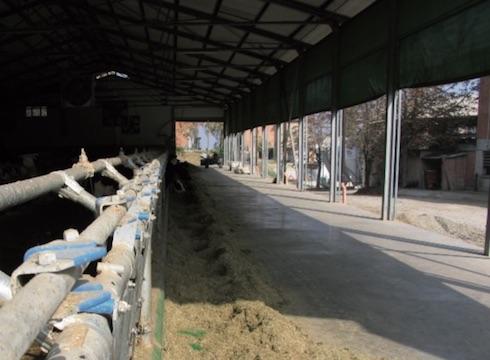 Impianto di raffrescamento evaporativo in zona di alimentazione