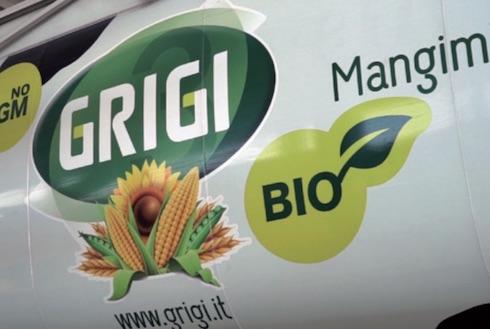 Logo Gruppo Grigi