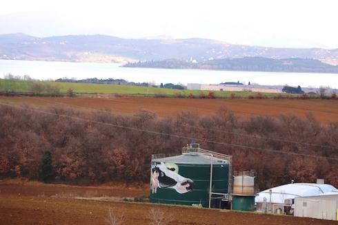 L'azienda agricola e agrituristica è collocata nelle immediate vicinanze del lago Trasimeno