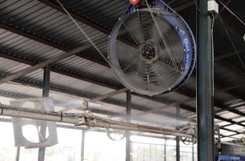 In area di attesa così come in rastrelliera, le bovine godono dei benefici del raffrescamento diretto, basato sulle docce a goccia grossa e sui nuovi ventilatori DeLaval