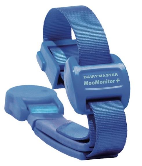 Moomonitor+ monitora la vacca un milione di volte al giorno per tre diverse misurazioni; dunque, oltre 3 milioni di dati vengono quotidianamente elaborati da potenti server