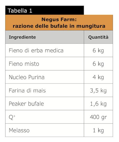Tabella: Negus farm - Razione delle bufale in mungitura