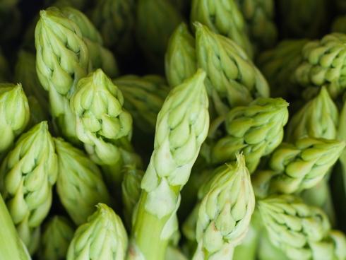 Asparago verde, bianco, violetto e selvatico: differenziazzione del prodotto