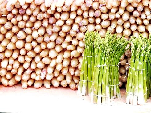 Turioni di asparago della tipologia verde e bianco