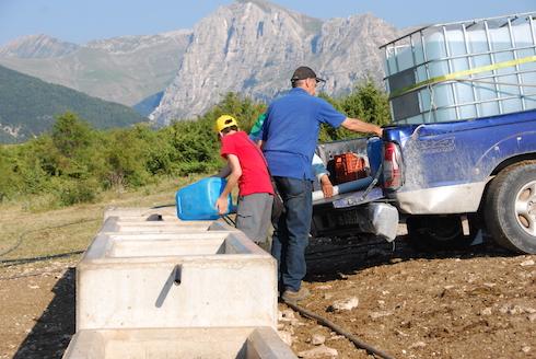 Manca l'acqua nelle zone colpite dal terremoto nel 2016: gli allevatori si organizzano come possono con botti e altre soluzioni d'emergenza