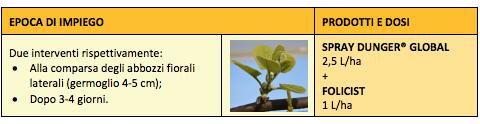 Impiego su kiwi giallo