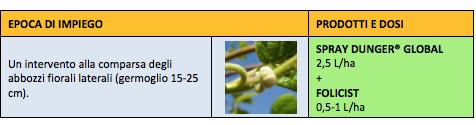 Impiego su kiwi verde
