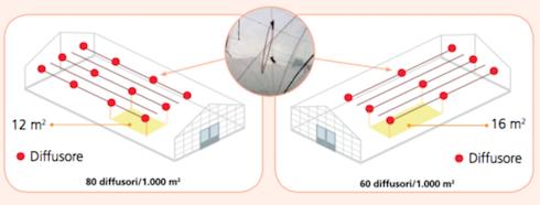 Dosaggio e distribuzione in serra di Isonet on