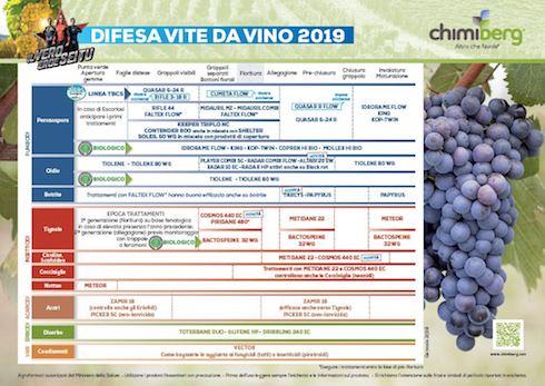 Difesa vite da vino 2019