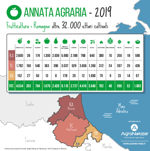 Annata agraria 2019 in Romagna - Frutticoltura
