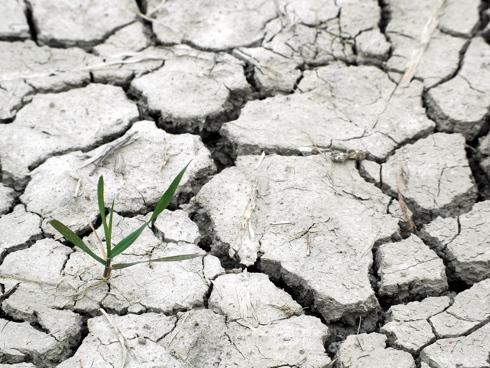 Crepe nel terreno a causa di una forte siccità