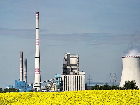 Colza e biocarburante sono un binomio interessante