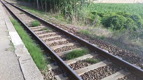 In caso di mancato diserbo, anche le ferrovie possono cadere vittime delle infestazioni di erbe infestanti