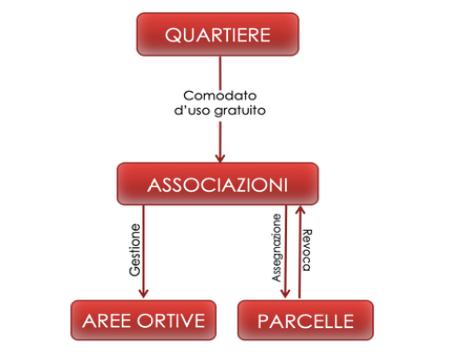 Schema dell'assetto amministrativo