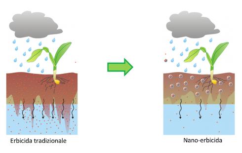 riduzione della mobilità del nano-erbicida