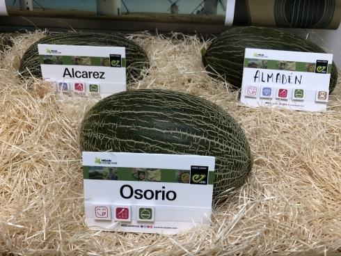 Melone Osorio