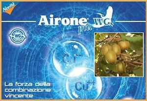 Airone - Gowan