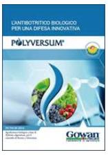 Brochure di Polyversum