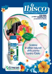 Brochure di Ibisco