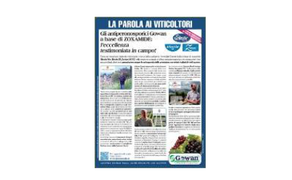 Articolo con le esperienze dei viticoltori