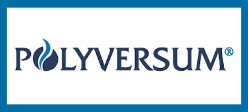 Polyversum logo
