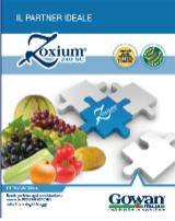 Zoxium, la brochure