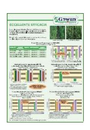 Brochure tecnica
