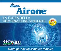 Linea Airone